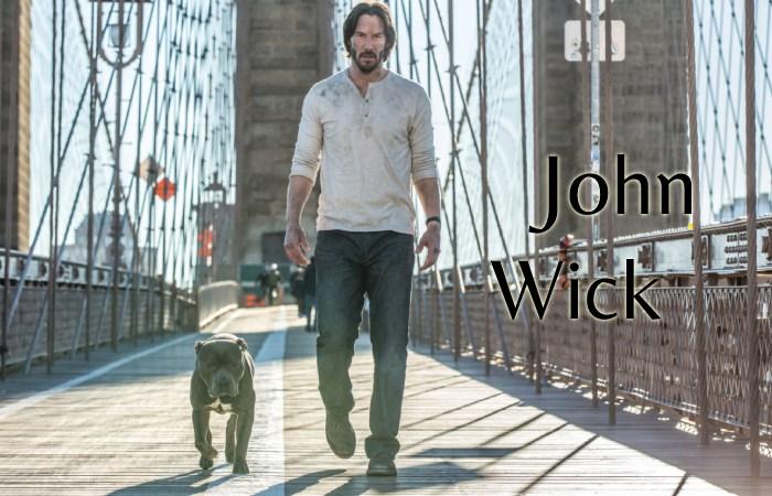 John Wick - torrent